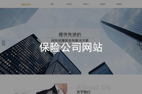 保险公司企业官网(简约大气)