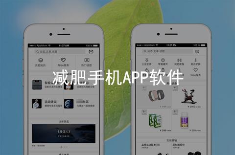 减肥手机APP开发案例