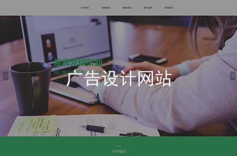 广告设计网站制作案例
