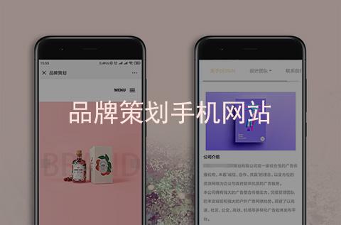 品牌策划手机网站建设案例