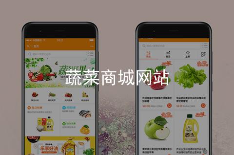 蔬菜商城手机网站制作案例