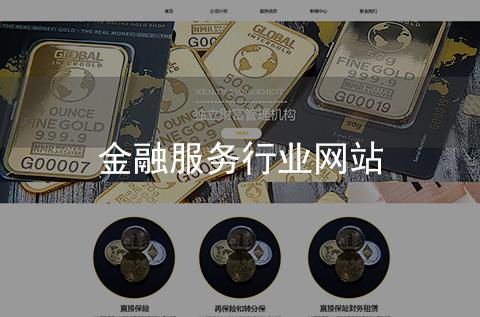 金融保险行业网站制作案例