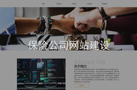保险公司网站建设案例